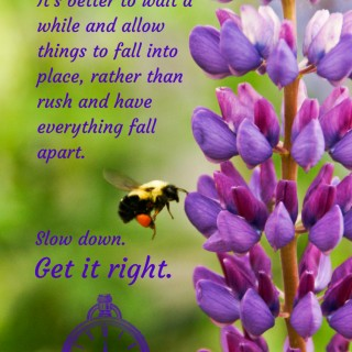 Quote: Slow Down Get It Right