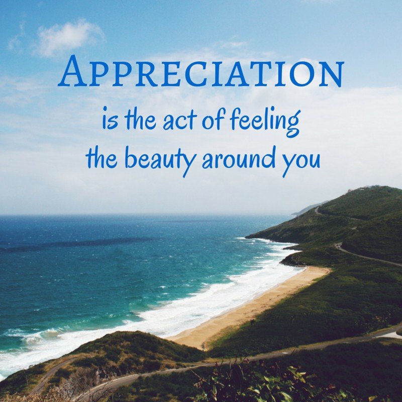 Best Quotes Appreciation Confetti Bliss Delectable Appreciation Quotes