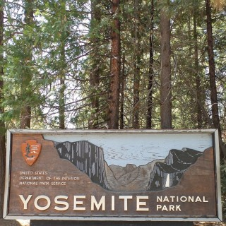 Yosemite National Park: California Road Trip