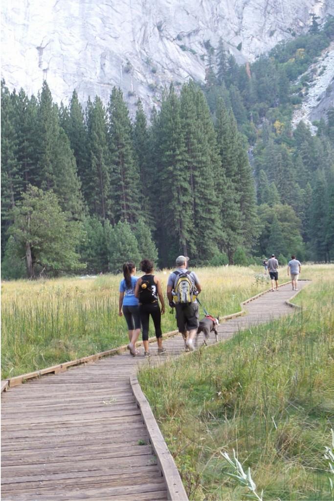 Yosemite National Park: Hiking through a meadow. | California Road Trip | confettiandbliss.com