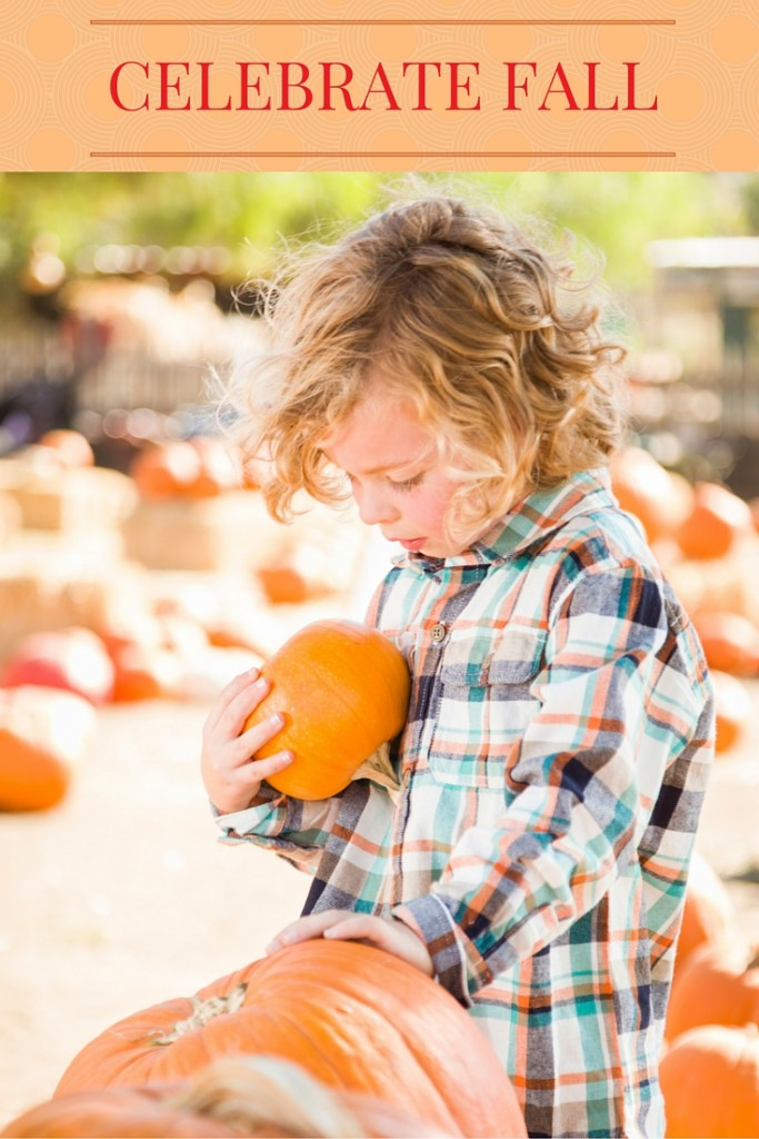 Celebrate Fall: 50 Happy Ways to Enjoy the Season | confettiandbliss.com