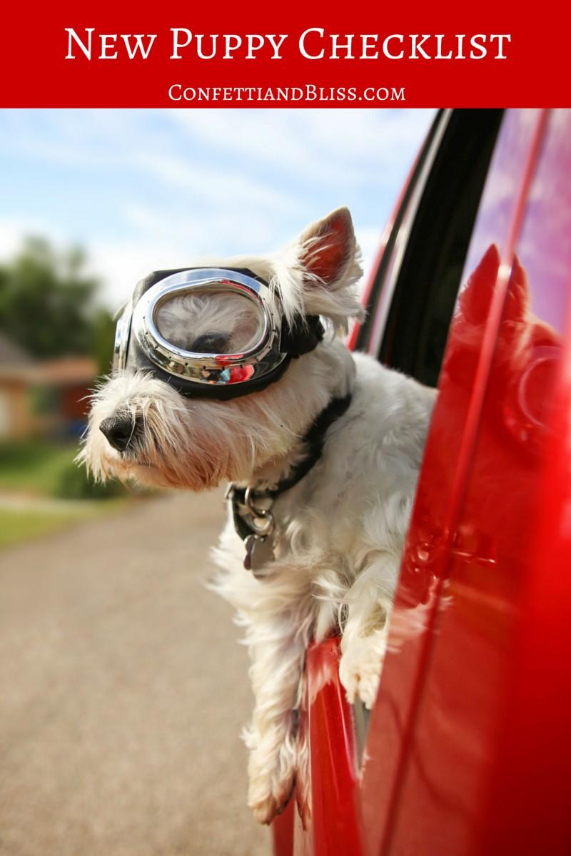 New Puppy Checklist | Pet Supplies for Fido | Dog Supplies