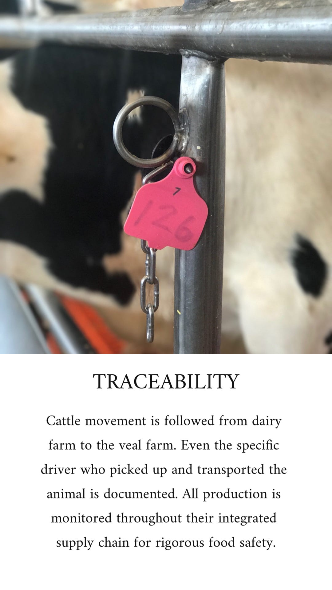 Close-up image of a pink farm tag tracing meat movement from farm to store.