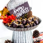 Oreo Balls on a cake stand surrounded by fall decor.