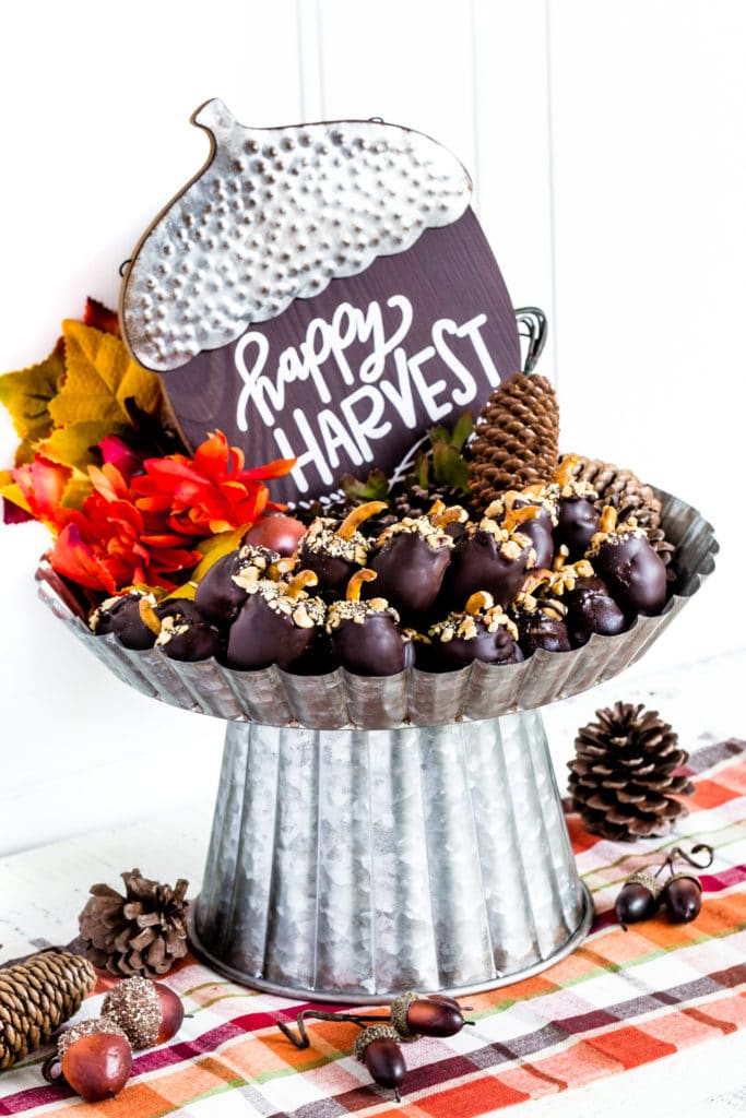 Oreo Balls on a cake stand surrounded by festive fall decor.
