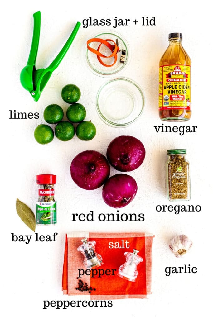 Ingredients for pickled red onion recipe plus a glass jar with lid and a lime squeezer.