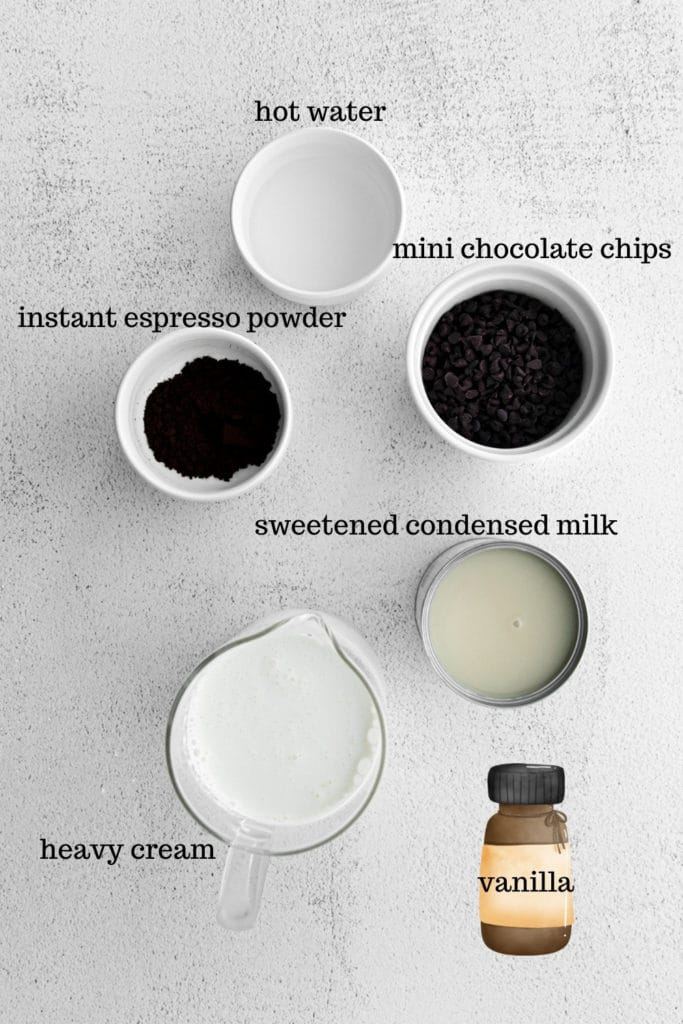 Ingredients for making homemade chocolate chip ice cream.