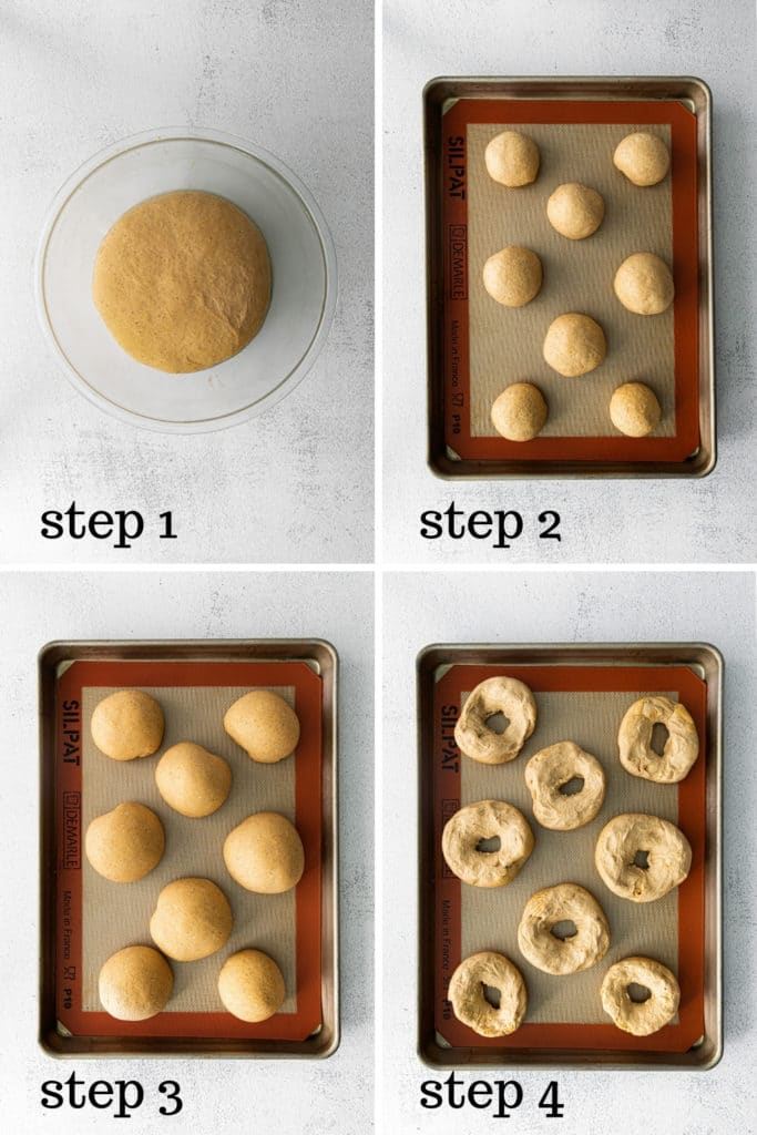 Bagel dough rising twice: in bowl and on a baking tray, then formed into bagel shapes.